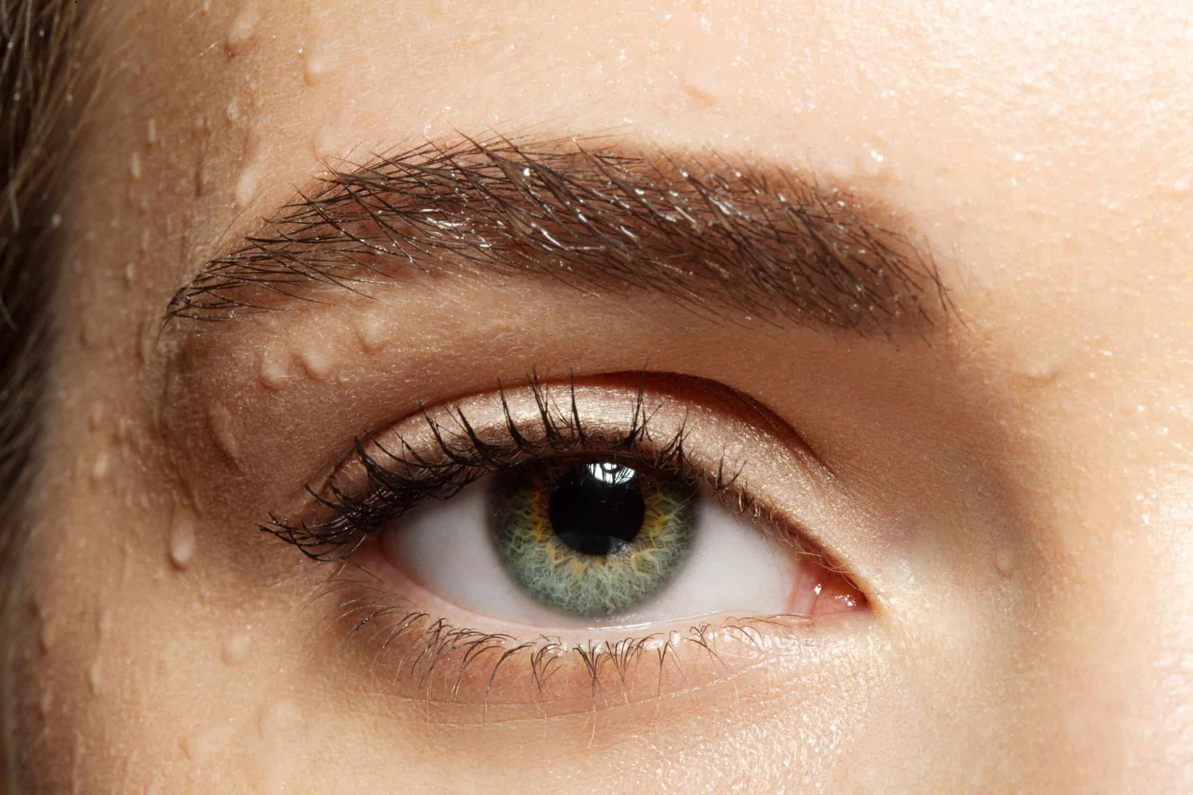 Close-up of natural make-up eye with black eyelashes and brown eyebrows with water drops