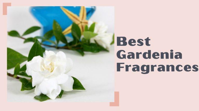 Best Gardenia Fragrances